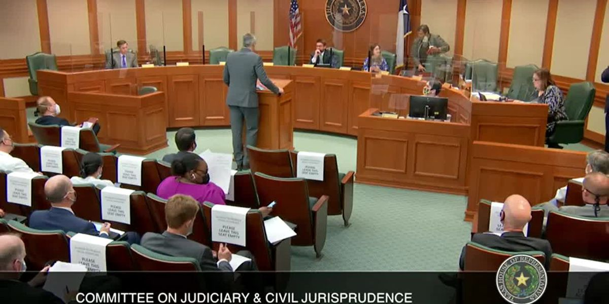 Rep. Schaefer, Smith County officials make case to committee for new judicial court