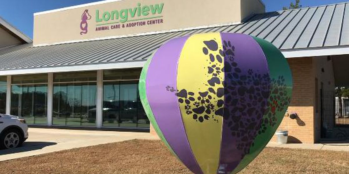 Steel hot-air balloons popping up in Longview