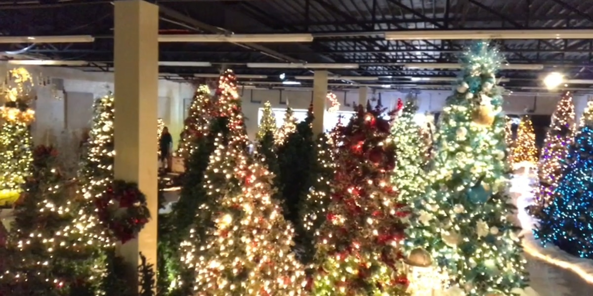 Carols in the Park lights up indoor Christmas tree forest in Pittsburg