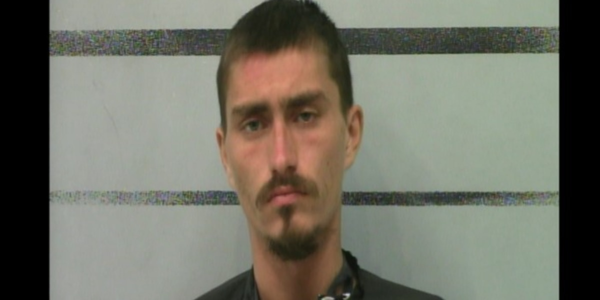 Lubbock man with machete indicted after stealing chicken wings from United