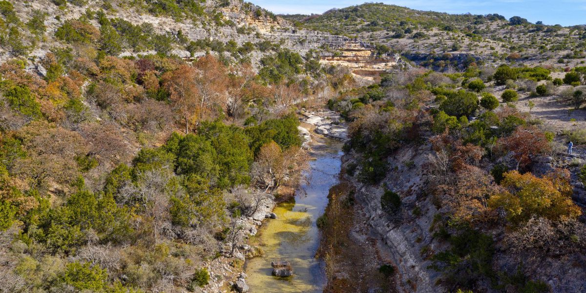 East Texas Ag News: Conservation easements helping Texans