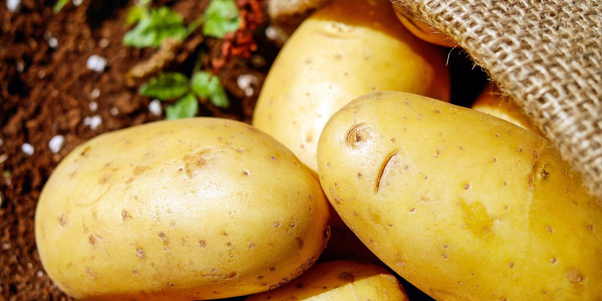 How clean is your food? Potatoes, strawberries top 'Dirty Dozen' list