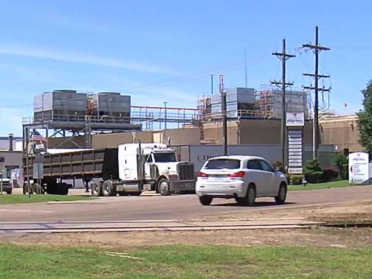 WEBXTRA: Titus, Camp county officials express concern over delayed COVID-19 test results