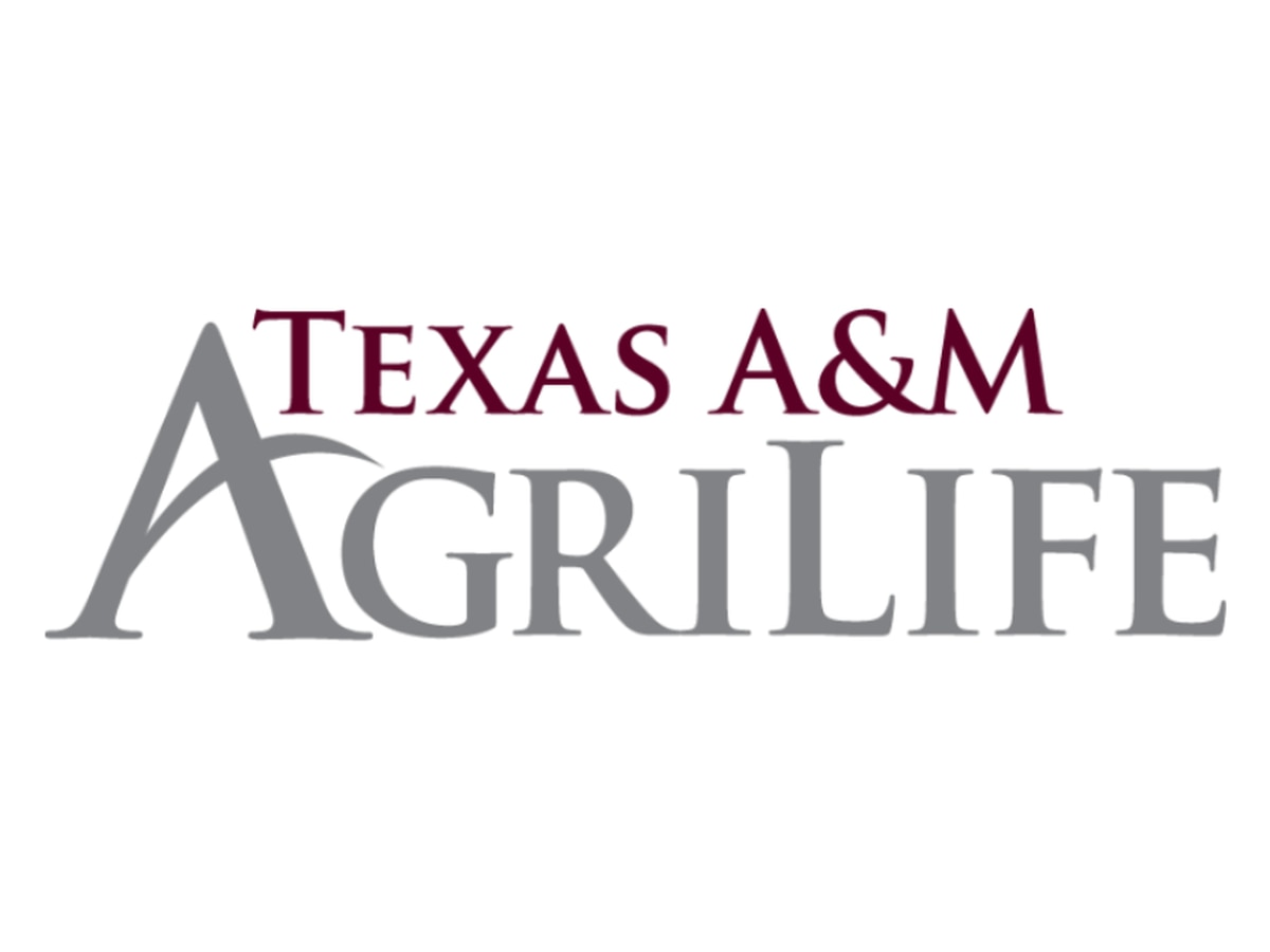 East Texas Ag News: Texas A&M AgriLife at Texas State Fair this weekend