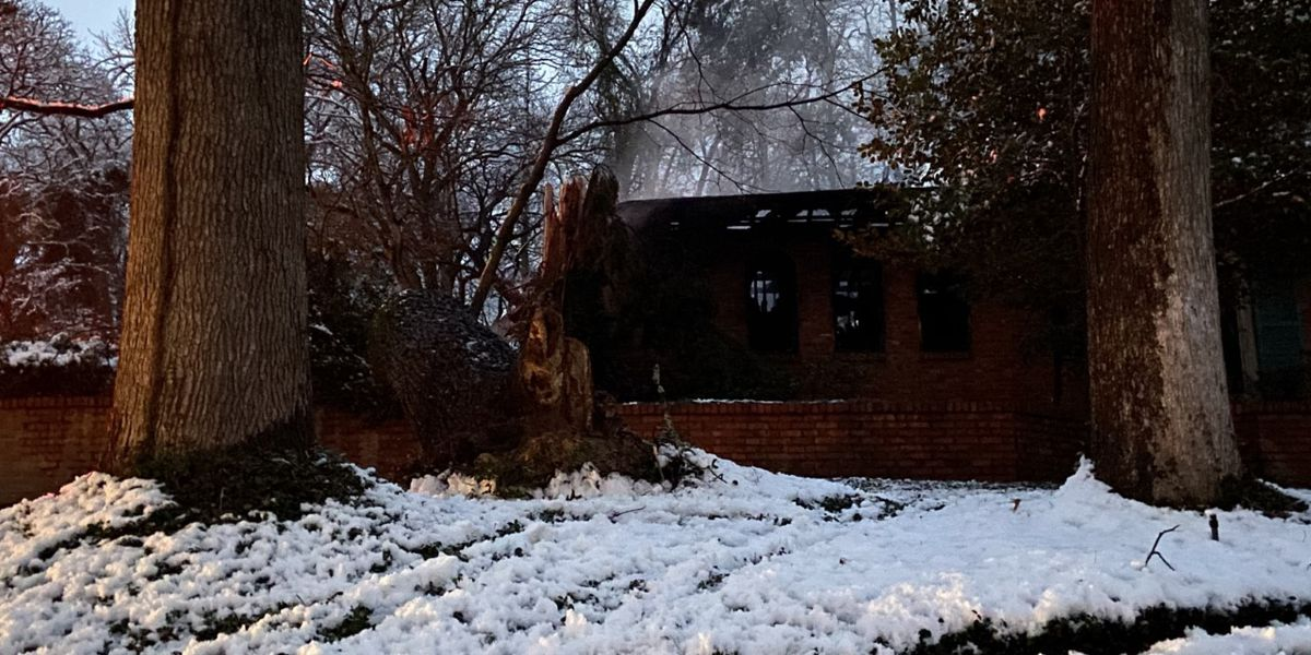 Tree appears to fall into Tyler home on fire