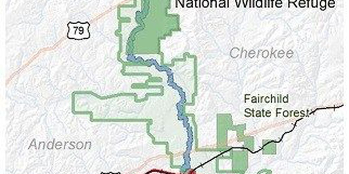 Nearly 6,900 acres of East Texas forestland to be protected