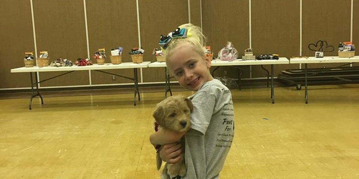7-year-old girl receives diabetic alert dog