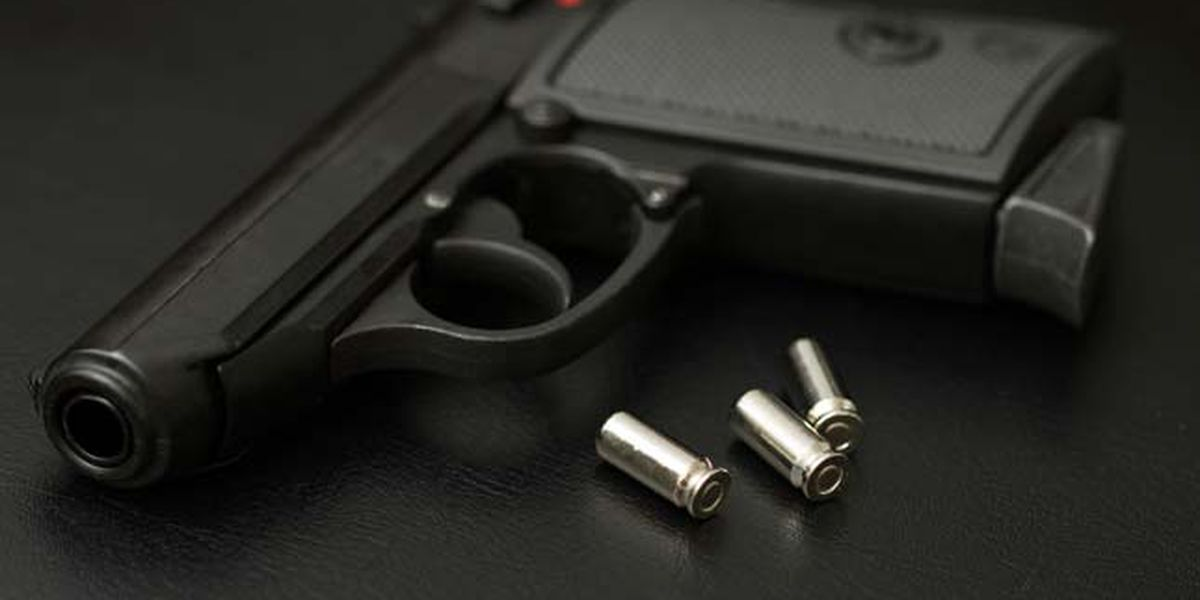 New gun laws take effect Sept. 1