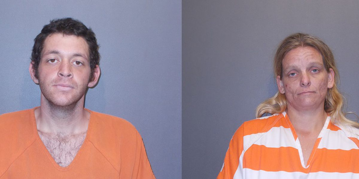 Pair arrested for alleged residential burglary in Wood County
