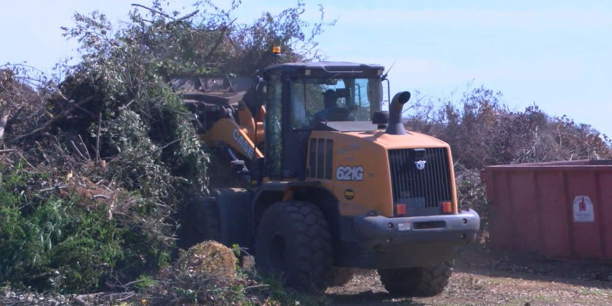 Longview compost site overwhelmed months after spring storms