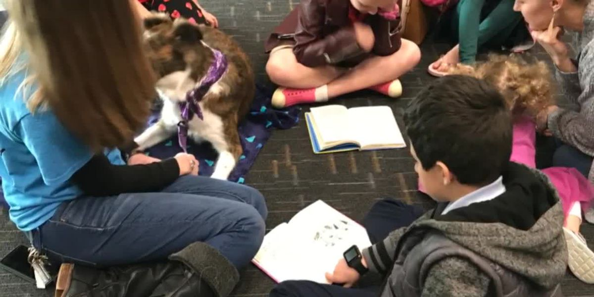 Kids in Longview share favorite books with therapy dogs in 'Paws to Read' program