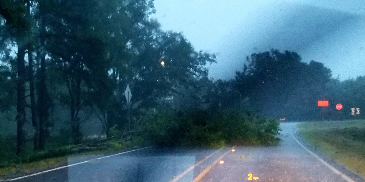 Storms sweep through East Texas causing outages, downed trees