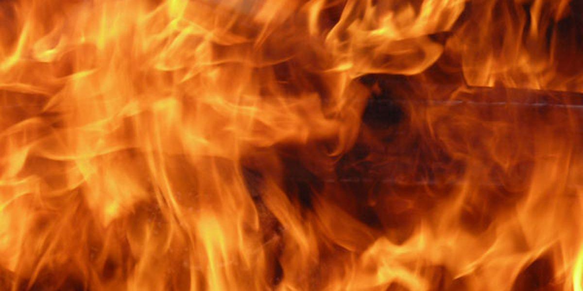 Firefighters battle blaze on E. Marshal Ave near Eastman Rd