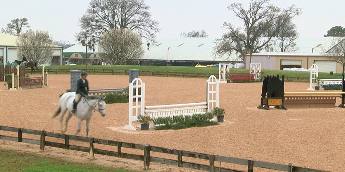 Tyler horse park prepares for Spring Kickoff including shows, competitions