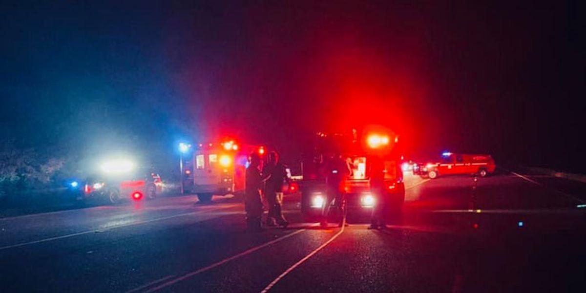 DPS: Minivan hit hog on SH 31 between Brownsboro, Chandler, veered into parked pickup
