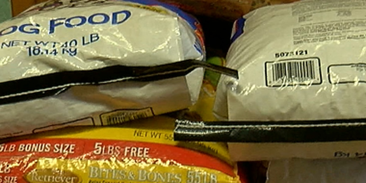 East Texas girl asks for dog food donations instead of birthday gifts