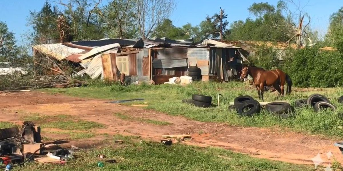 WEBXTRA: Shelter set up in Alto for storm victims