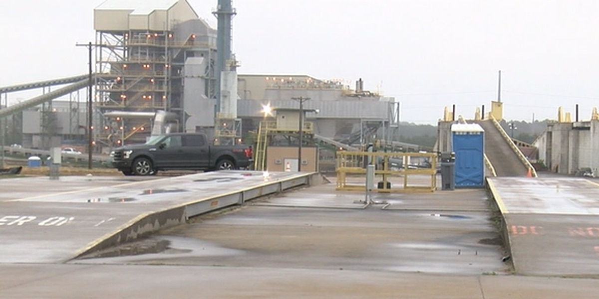 Potential new biomass plant coming to Lufkin