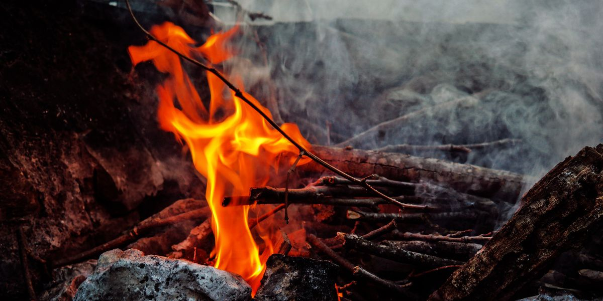 East Texas Ag News: Wood ashes can be used for landscape fertilizer