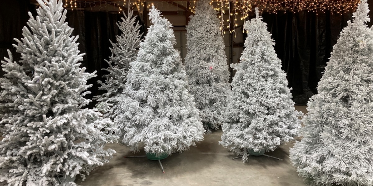 East Texas Christmas tree farms are seeing a boost in sales during the pandemic