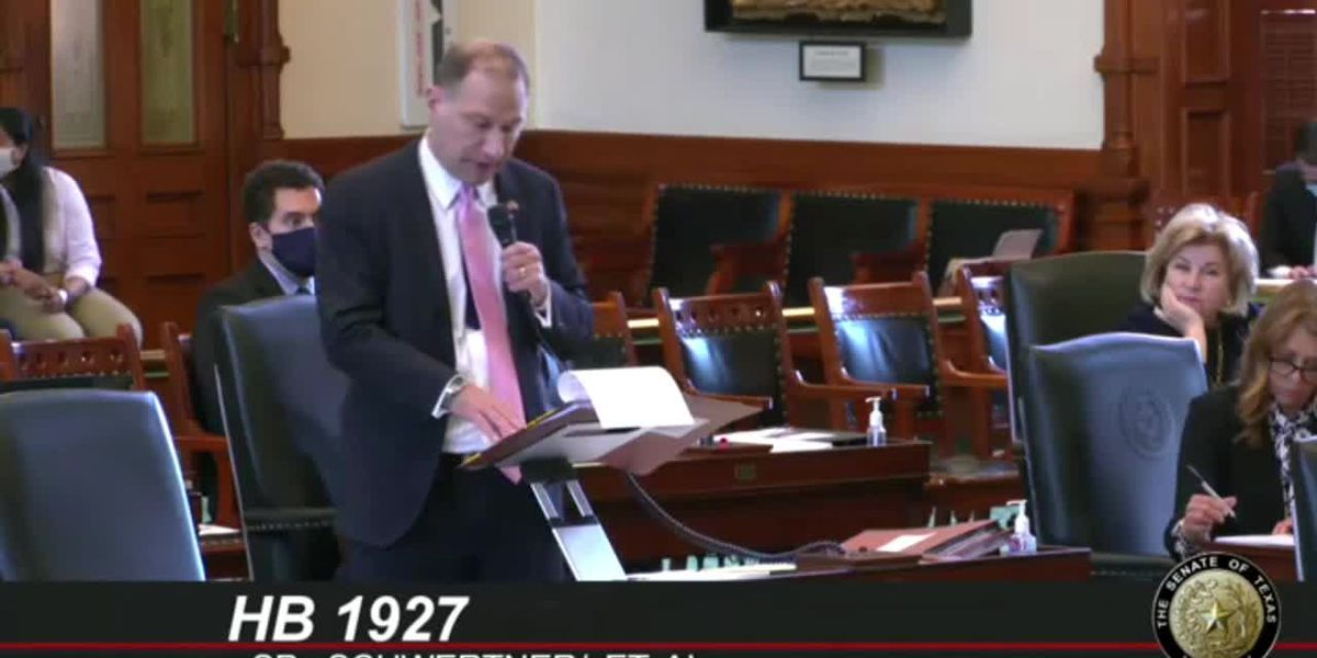 WATCH: Texas Senate debates Rep. Schaefer's permitless carry bill