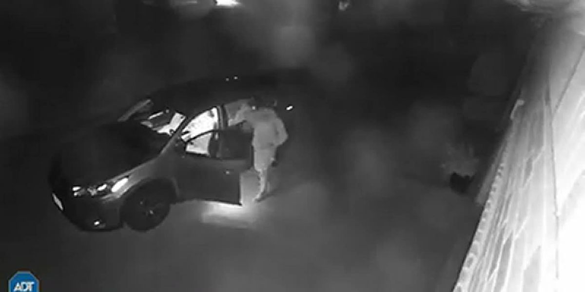 Vehicle burglary captured on video in Smith County