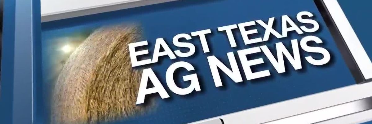 East Texas Ag News: Details on the Battleground to Breaking Ground program