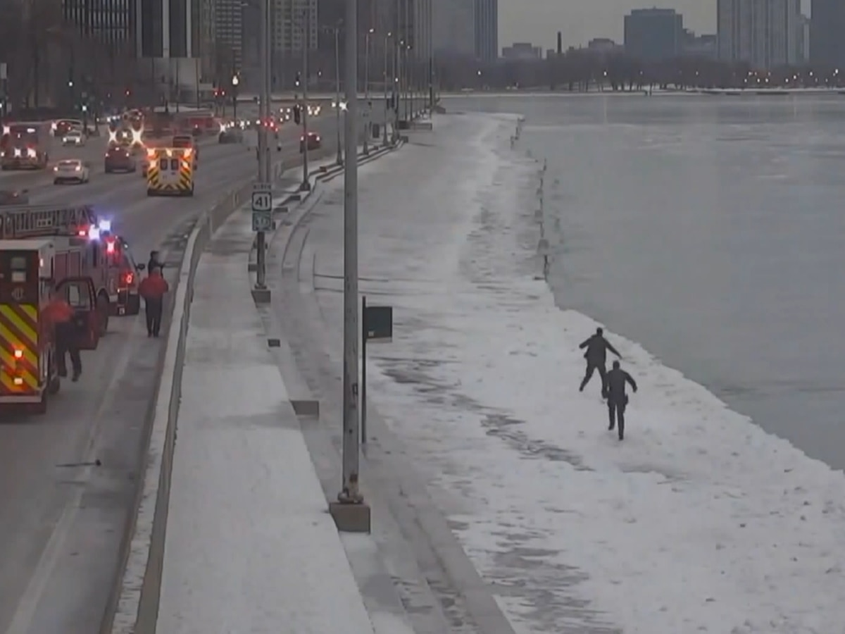WATCH: Ill. officers pull man from icy lake