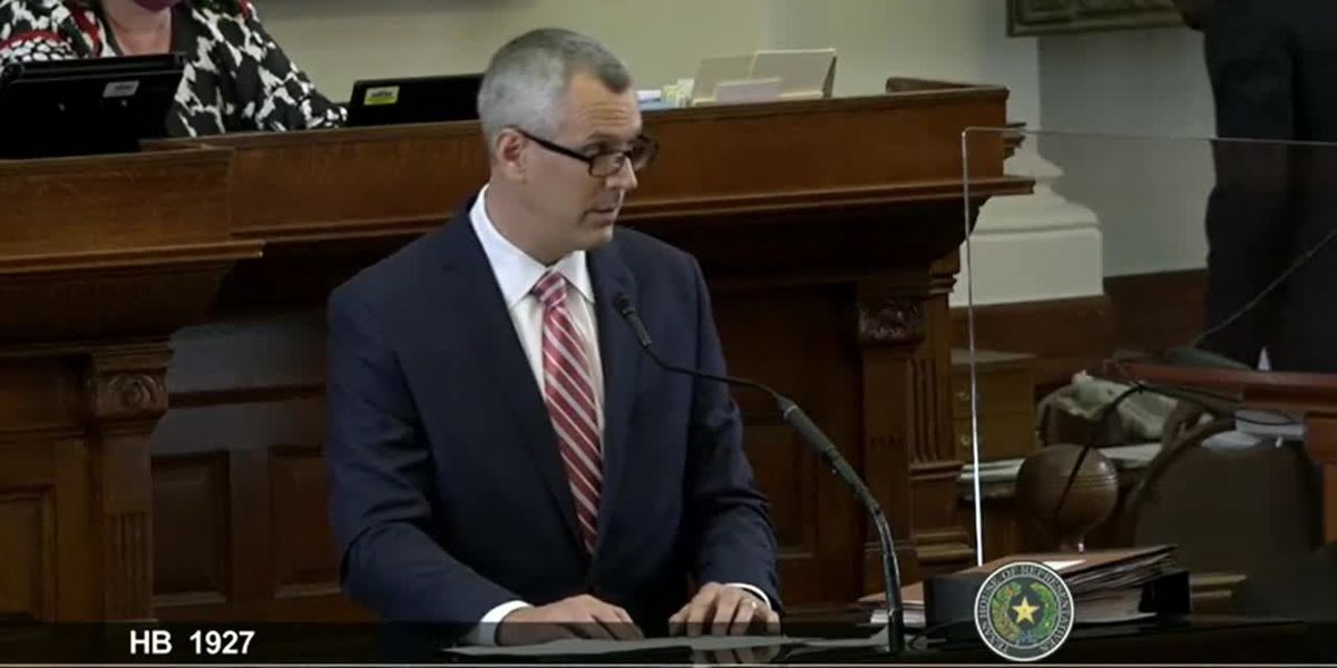 WATCH: Rep. Schaefer presents bill allowing for guns without permit to House