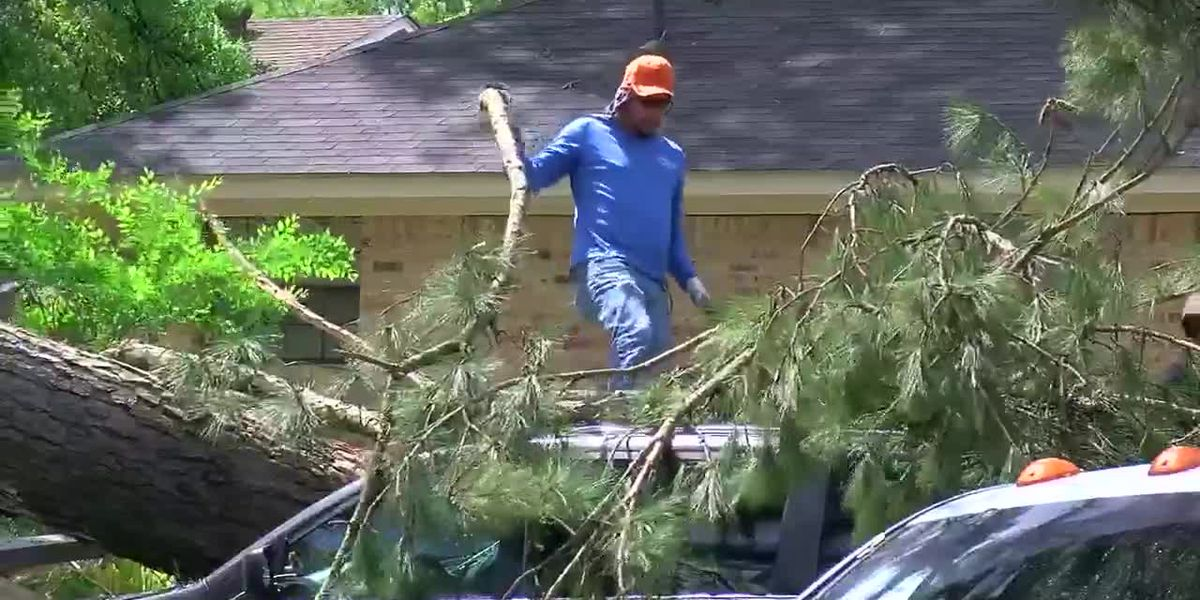 Cleanup efforts continue; power still out for many in Smith County