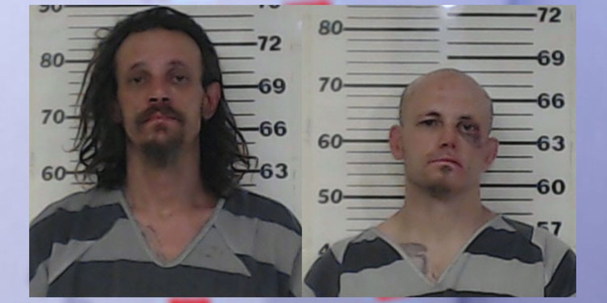 Affidavit: Athens brothers sexually assaulted, beat woman during drug binge