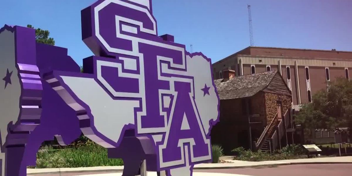 Students accused of filing false police report sue SFA