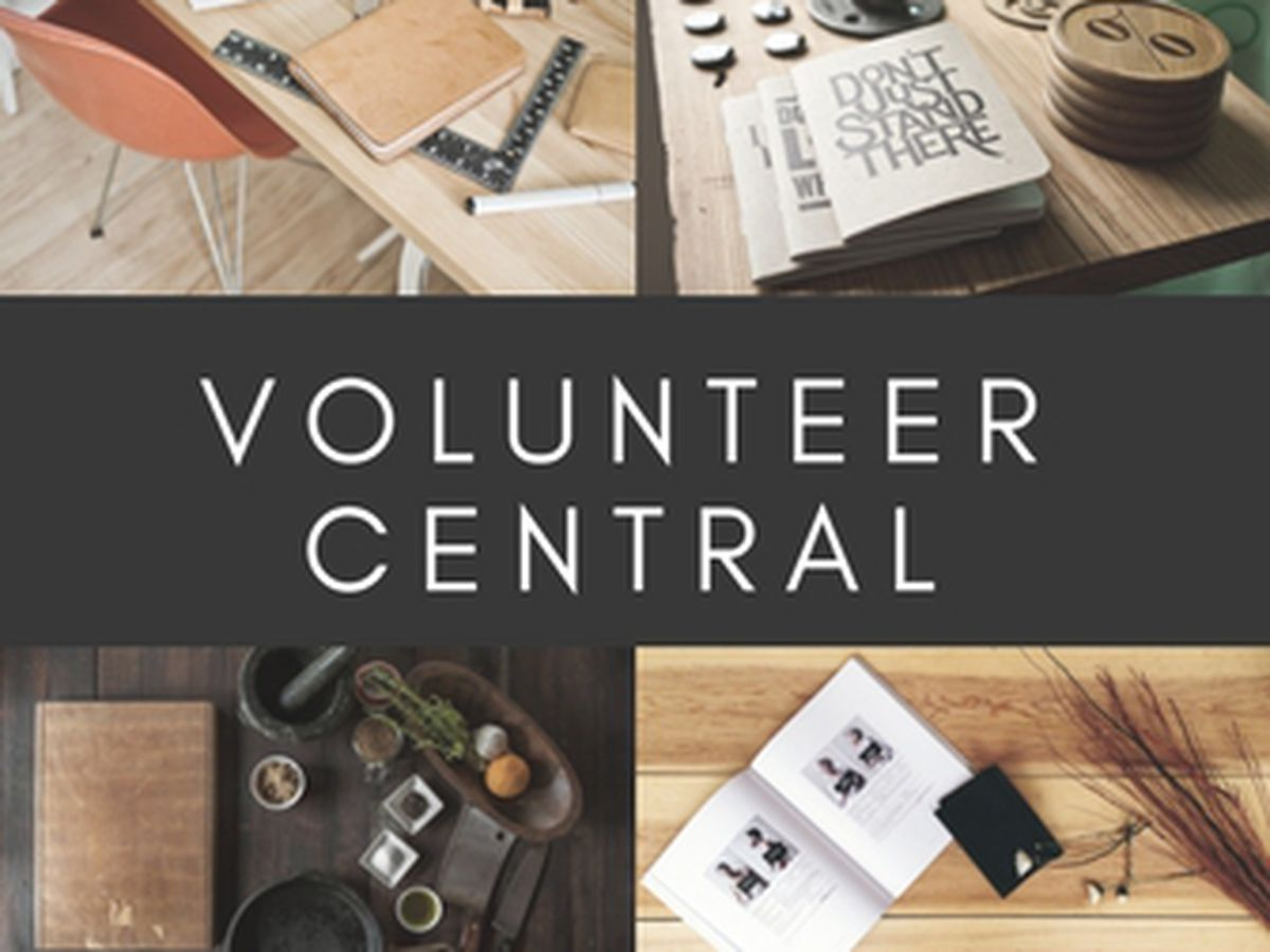 Volunteer Central: Opportunities to serve in your community this week