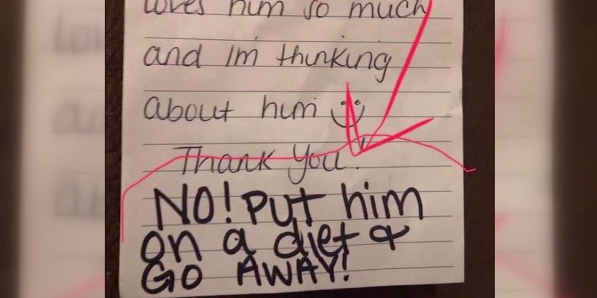 'Put him on a diet': Mom receives nasty note from 5-year-old son's daycare