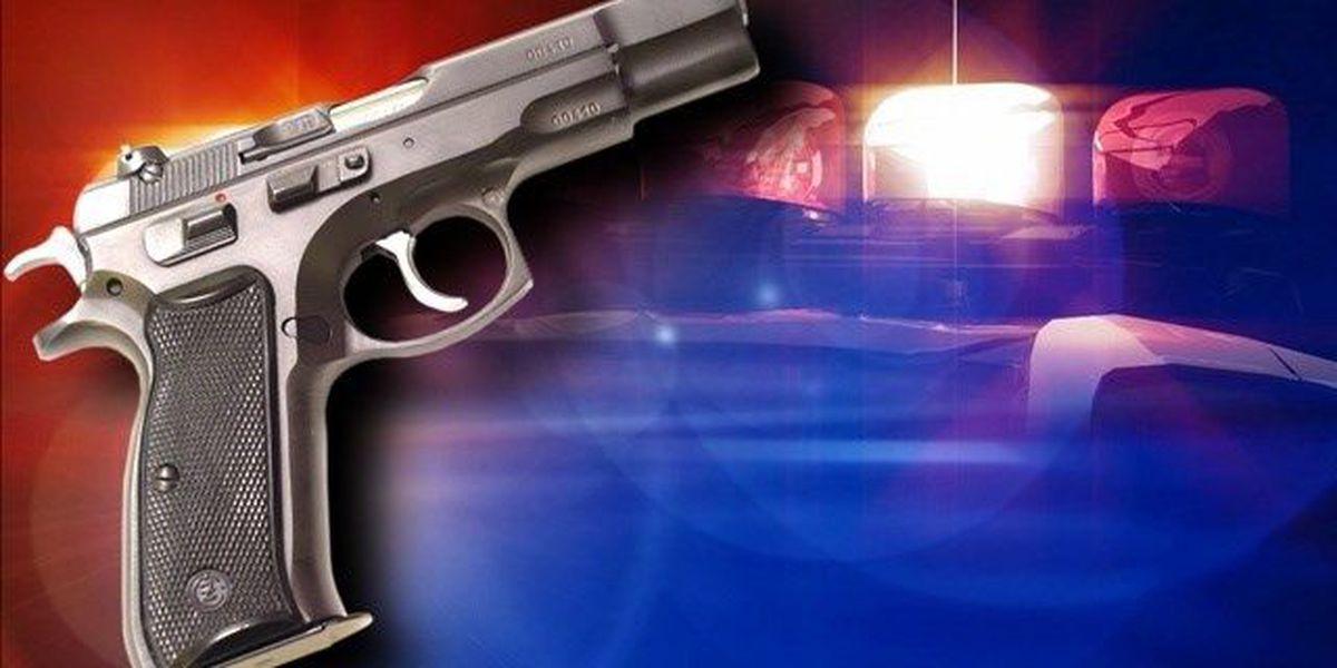 Suspects in custody in Longview shooting