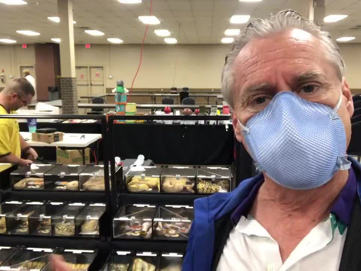 WATCH: Longview snake vendor talks about upcoming Herps Reptile Expo