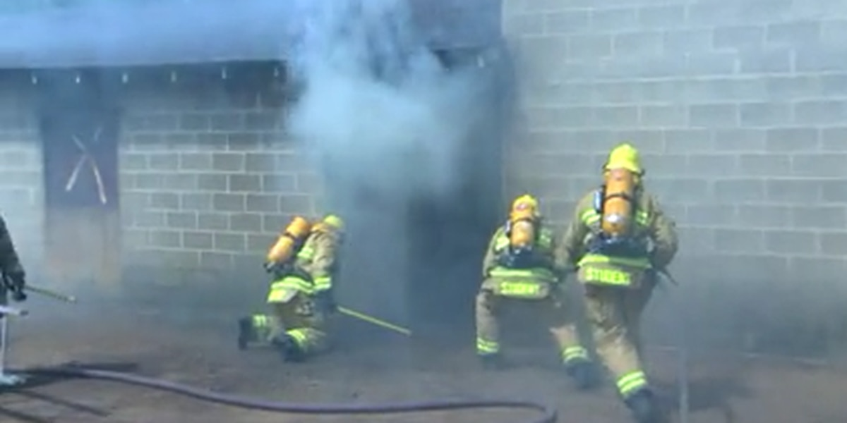 Academy cadets fight suppression fire in summer heat