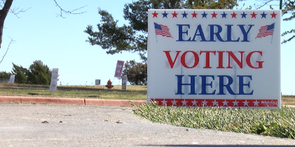 'The numbers are just tremendous': Potter and Randall counties contribute to Texas' record breaking number of early votes