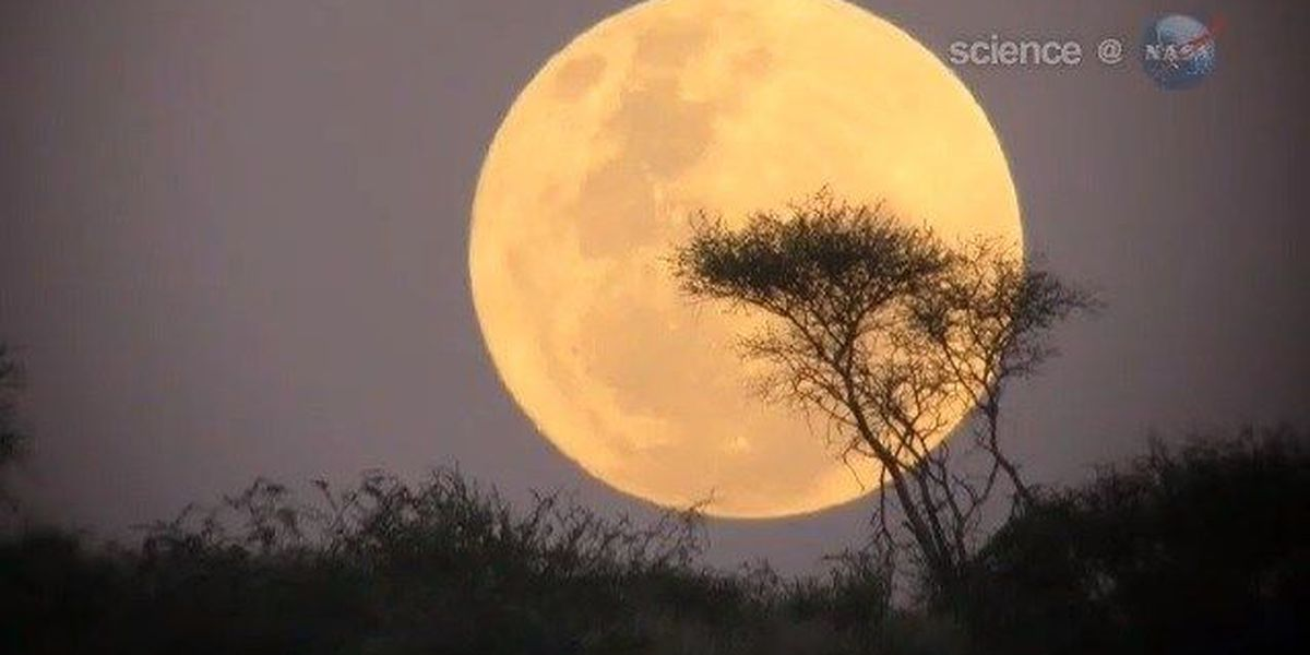 'Supermoon' visible in night sky this weekend