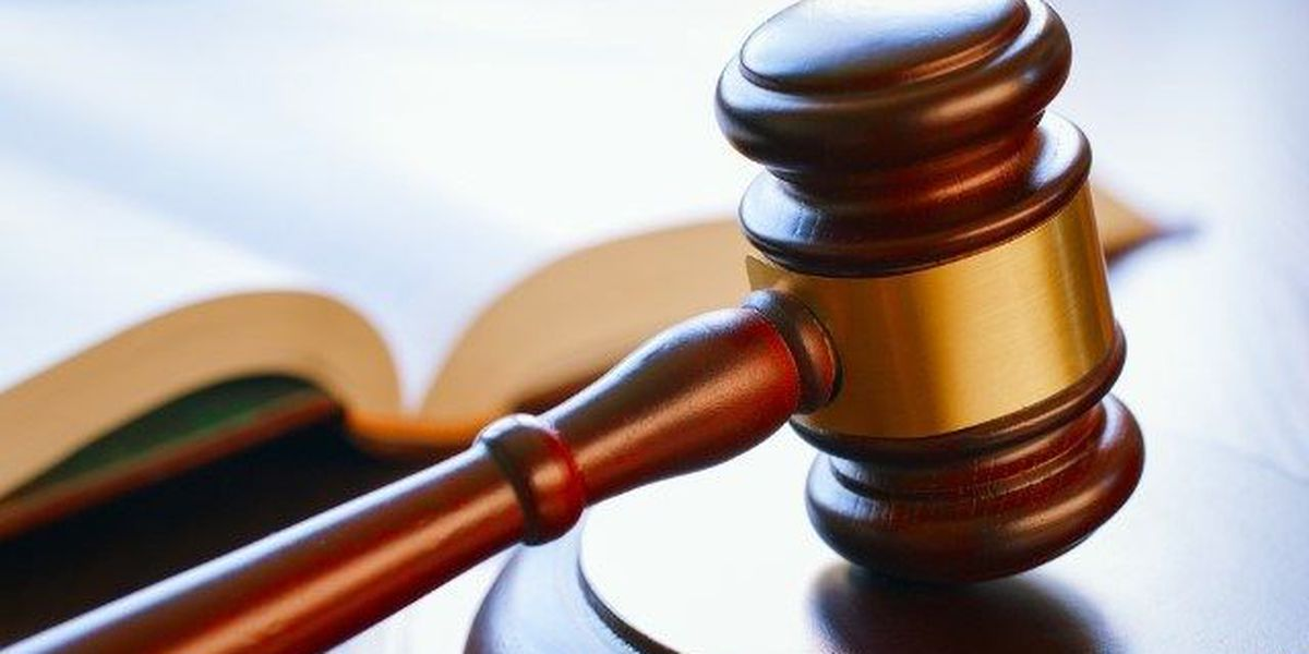 Mineola man pleads guilty to federal theft of government funds