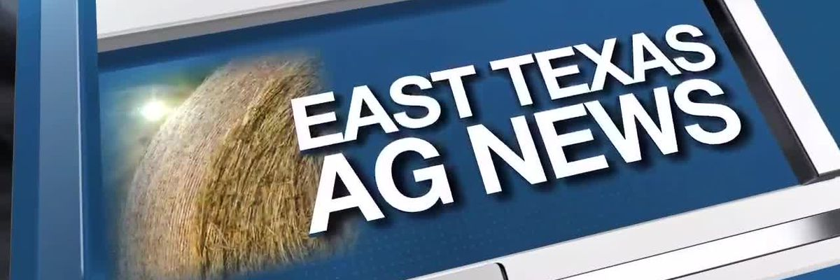 East Texas Ag News