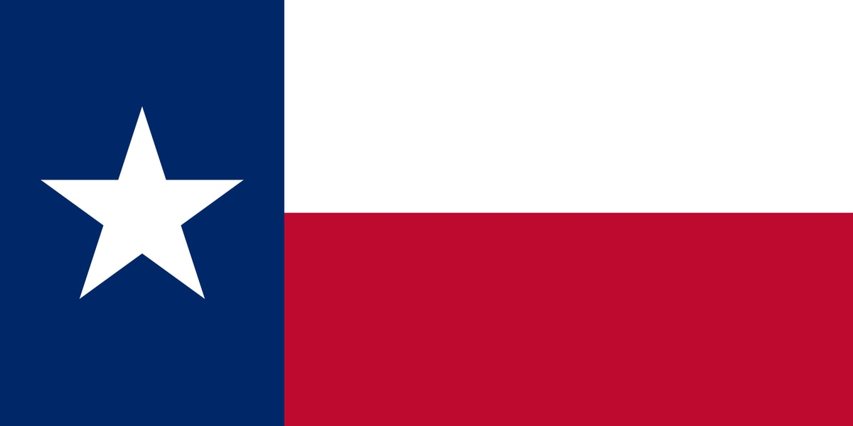 WEBXTRA: Could Texas be a swing state in 2020?