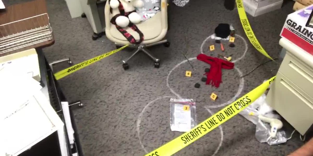 WebXtra: Gregg County Clerk's Office shows off 'killer' holiday decorations