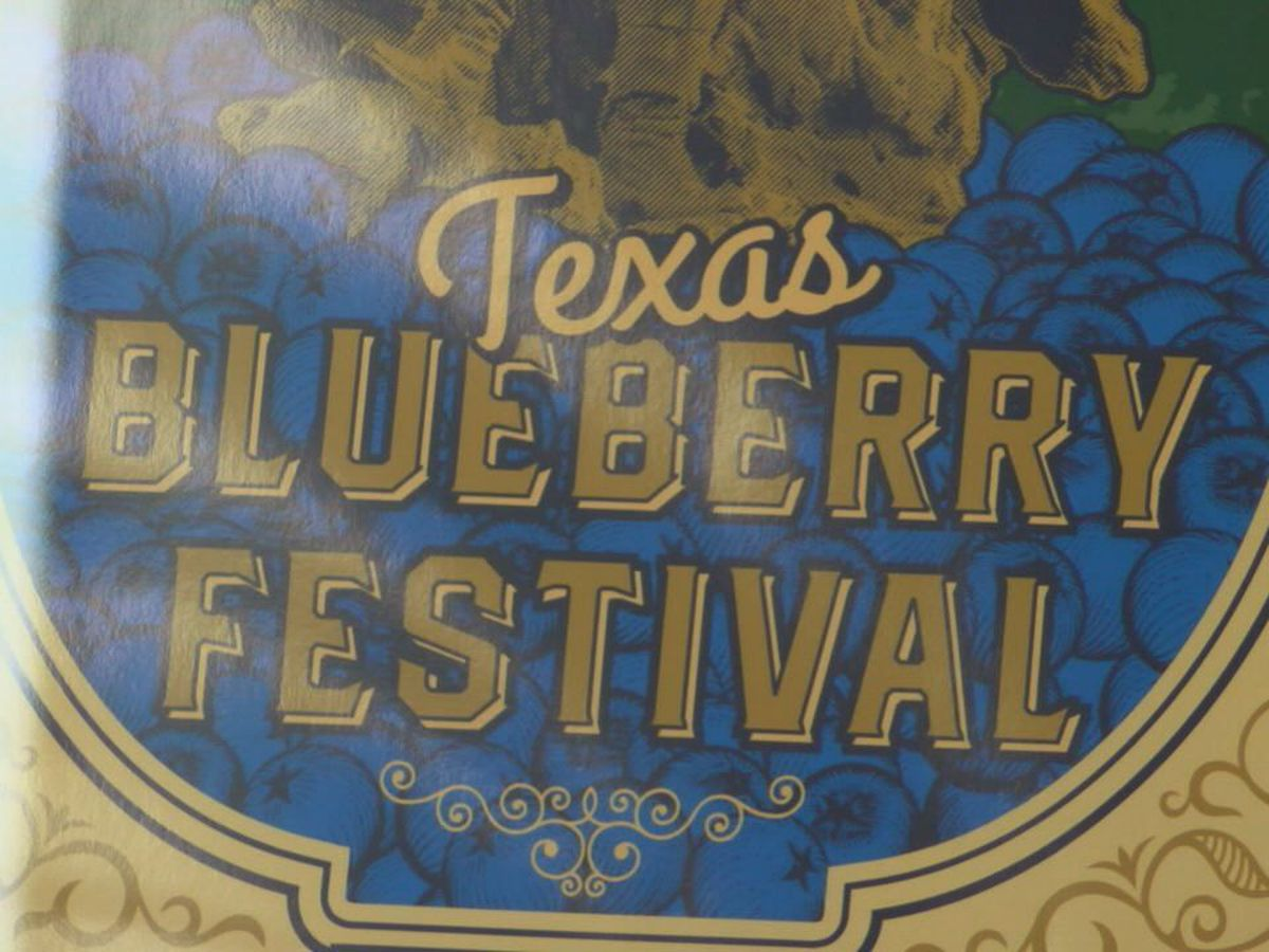WebXtra: Blueberry festival bounces back after a year hiatus