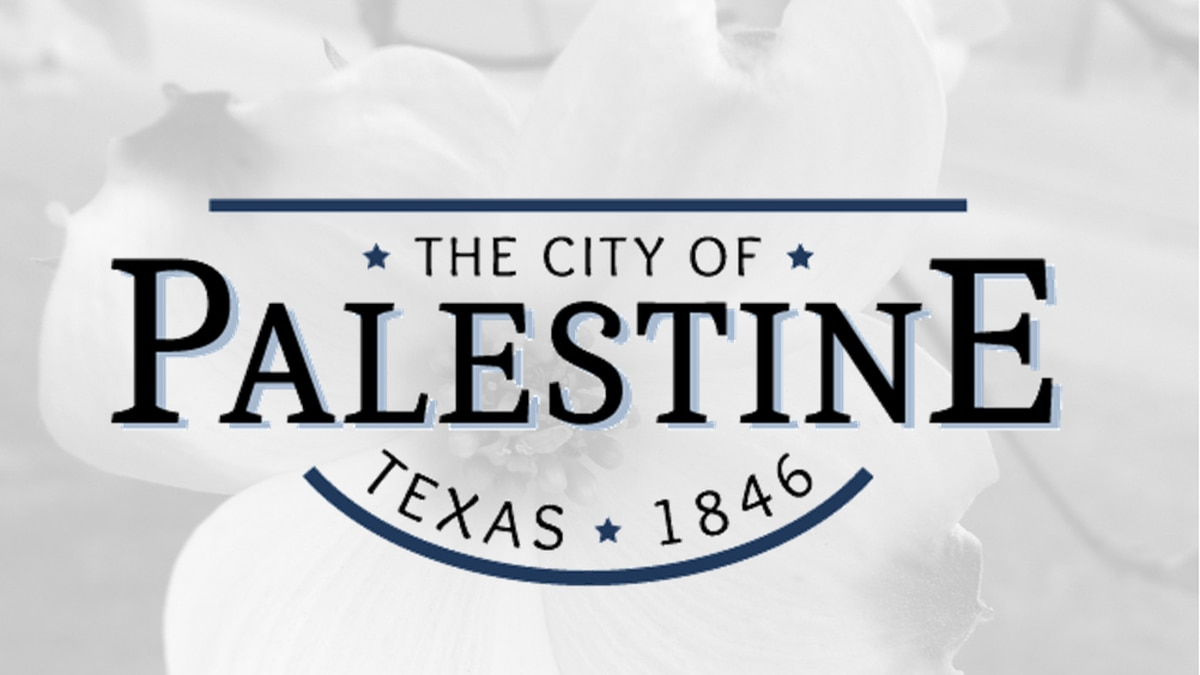 Water main break affecting homes and businesses in Palestine