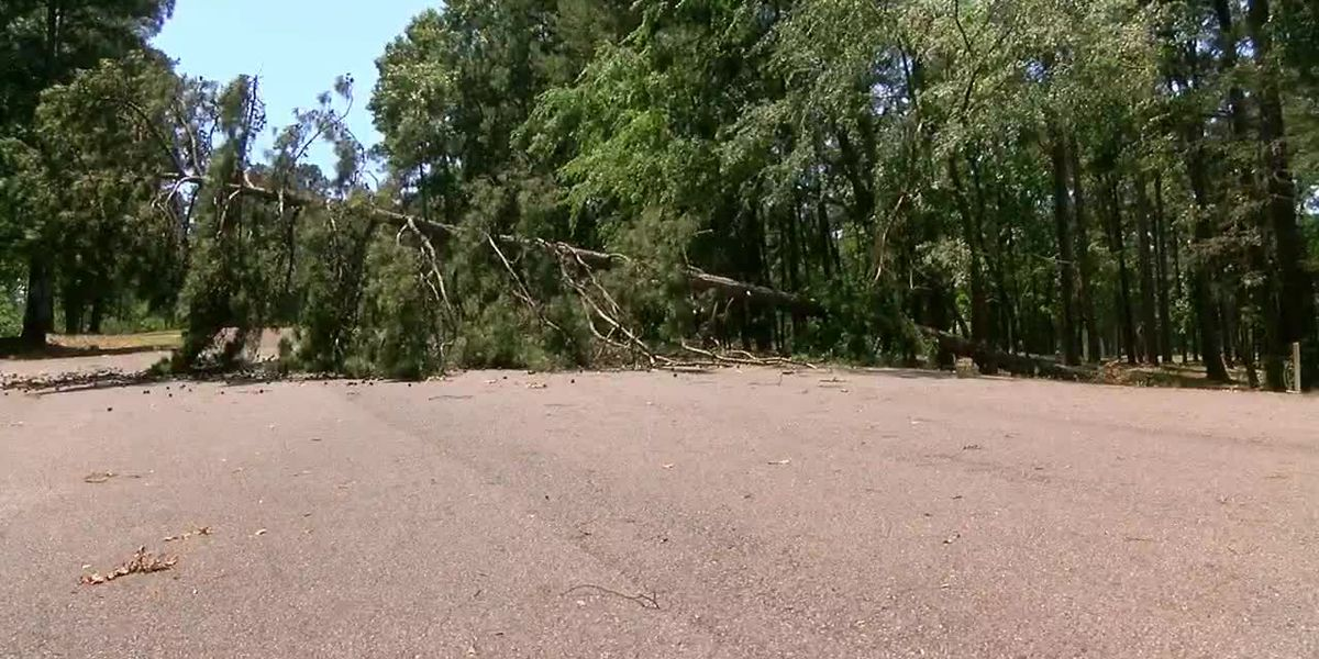 Brushy Creek area of Lake O' the Pines still closed year after deadly storm