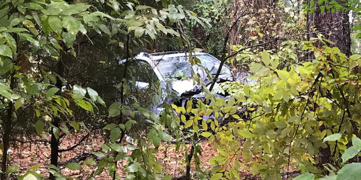 Woman narrowly escapes serious injury after car careens into woods off Toll 49