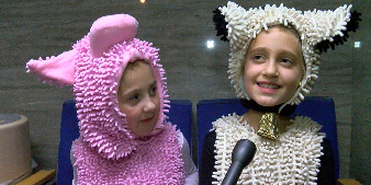 'I've always wanted to be a sheep!' Nutcracker adds more animals to cast