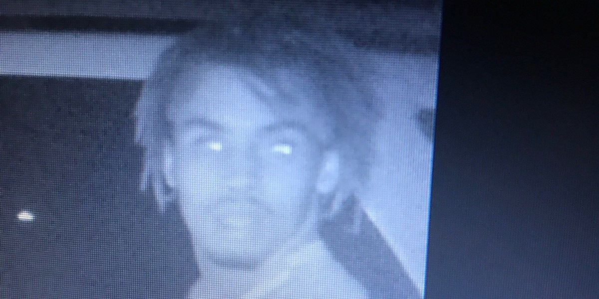 Officials seek vehicle burglary suspect in Harrison County