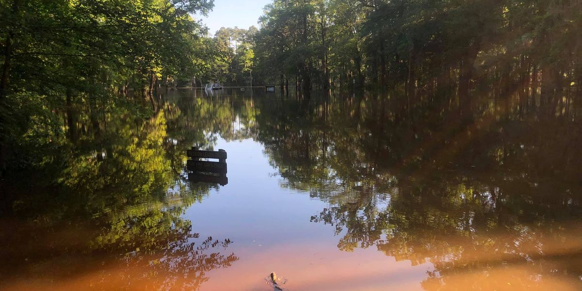 Parts of Caddo Lake State Park not expected to reopen until June